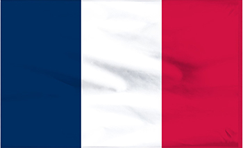 <French Flag>